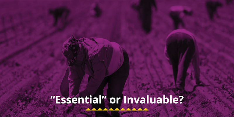 """""""Essential"""" or Invaluable?"""